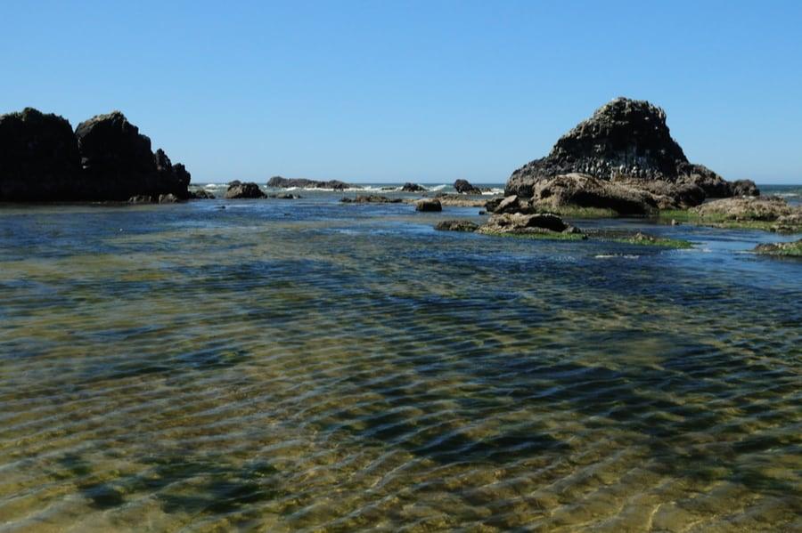 Seal Rock Near Waldport Oregon