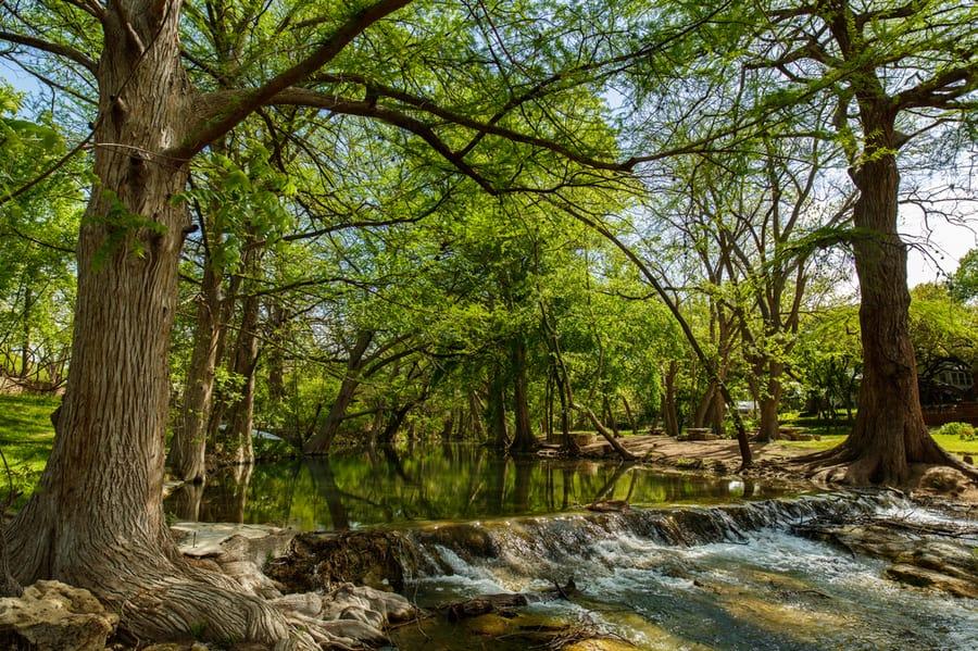 Creek Near Wimberley, Texas