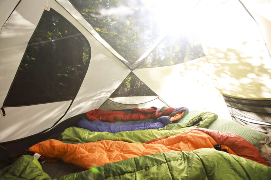 Camping Sleeping Bags Lined Up Inside a Tent