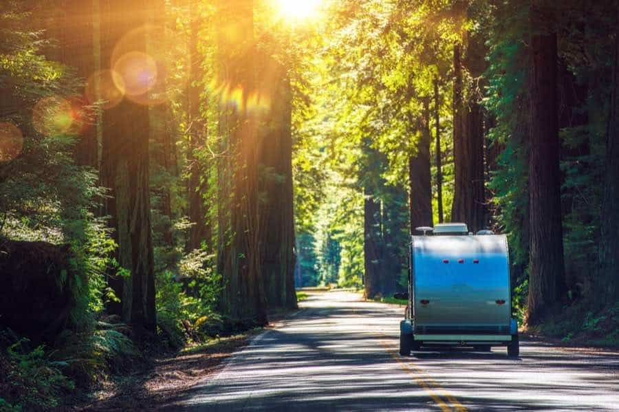 Travel Trailer Driving Through Redwoods