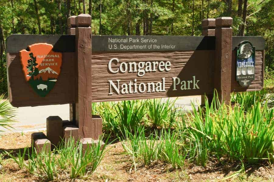 Sign in Congaree National Park