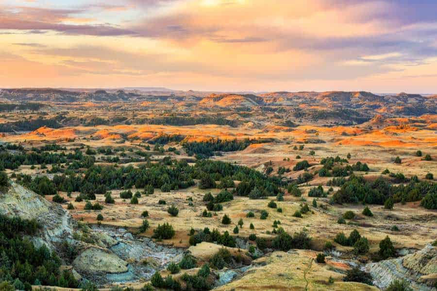 The Complete Guide to Camping in Theodore Roosevelt National Park