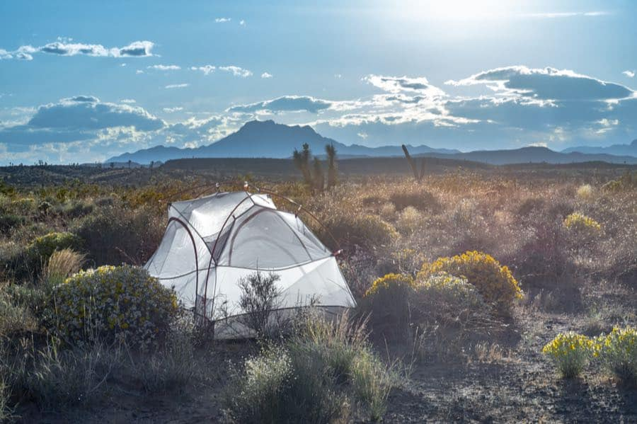 Tent Camping in the Desert