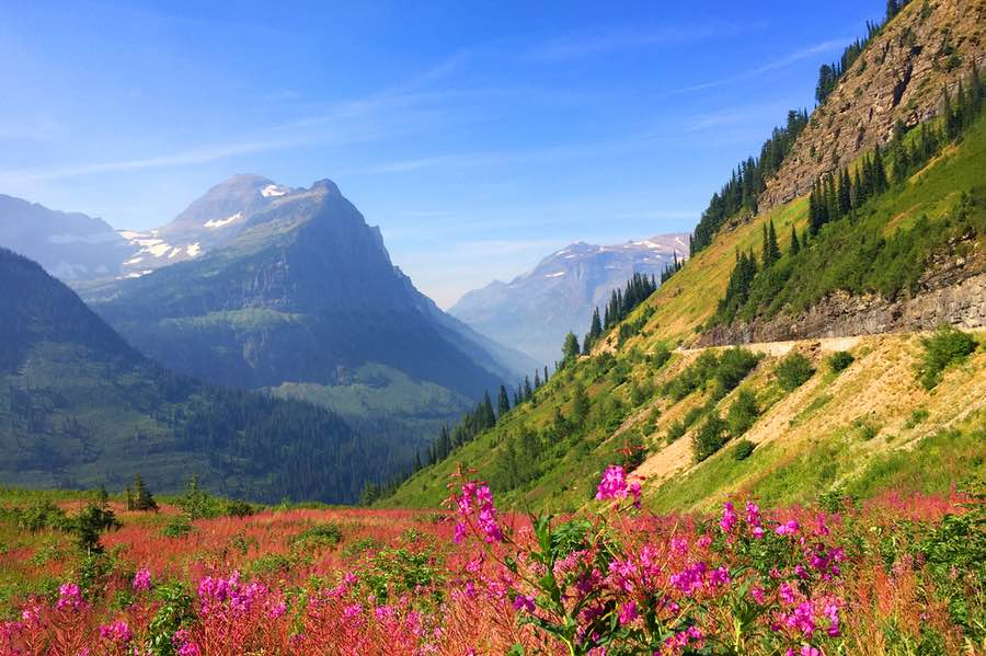 View of Valley and Mountains at Glacier National Park in Montana