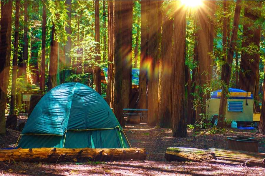 Tent Camping in Redwood National Park