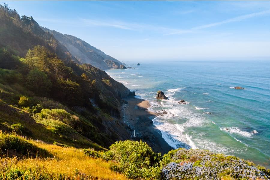 Redwood National Park Coastline