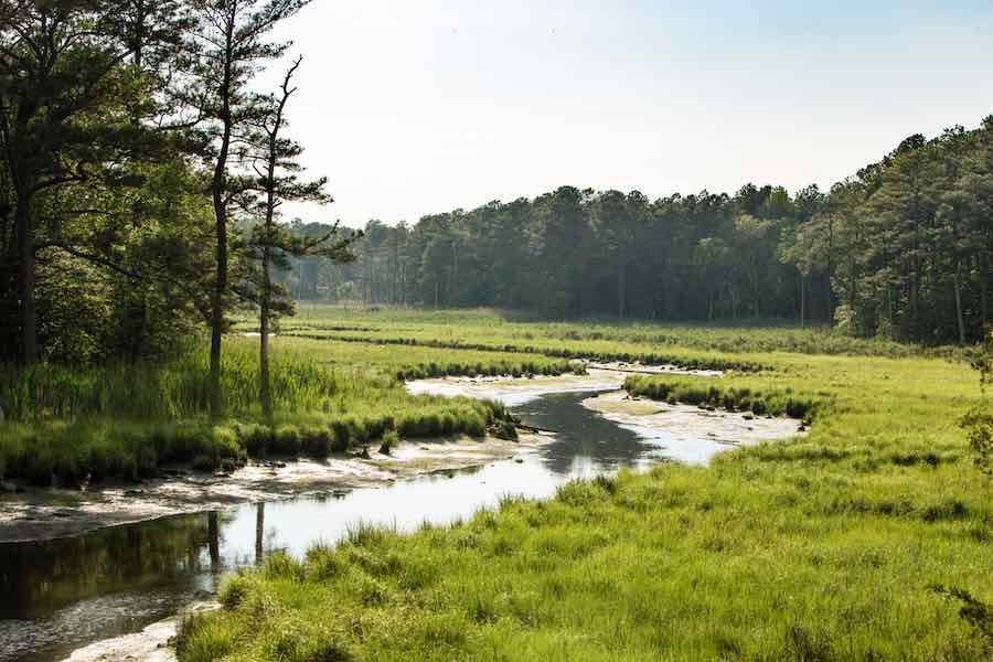 13 of The Best Places to go Camping in Delaware