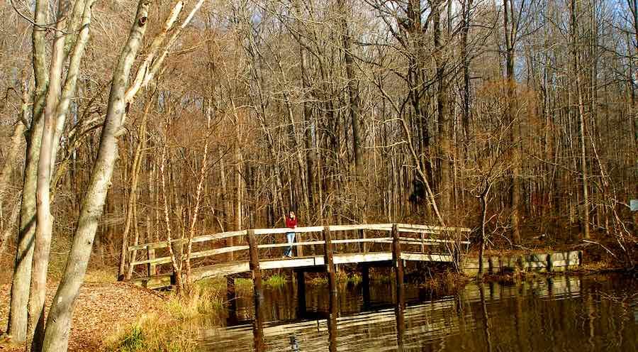 Lum's Pond State Park in Delaware