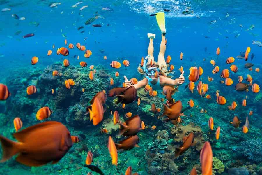 Women Snorkeling