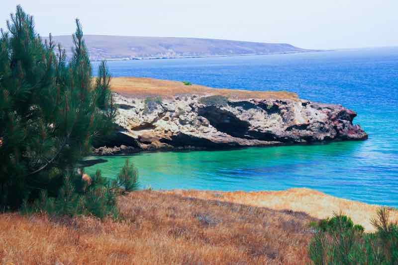Torrey Pines Channel Islands