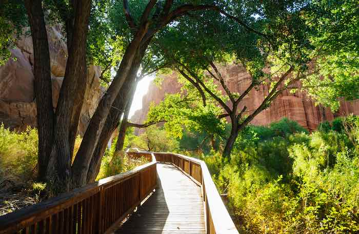 The Ultimate Guide to Camping in Capitol Reef National Park 2