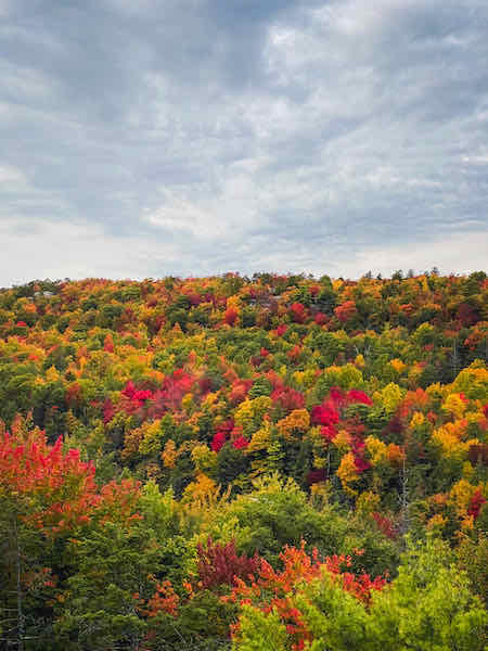 Catskill Mountains in New York